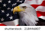 north american bald eagle on... | Shutterstock . vector #218446807