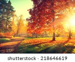 autumn. fall. autumnal park.... | Shutterstock . vector #218646619