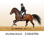 a rider in a show jumping... | Shutterstock . vector #21866986