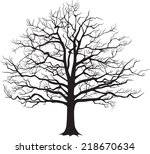 Black Silhouette Of A Bare Tree ...