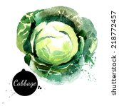 cabbage. hand drawn watercolor... | Shutterstock .eps vector #218772457
