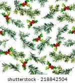 pine branch with mistletoe.... | Shutterstock . vector #218842504