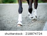 Closeup Of The Hooves From A...