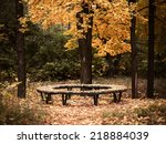 bench in the autumn forest. | Shutterstock . vector #218884039