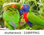 australian rainbow lorikeet   Shutterstock . vector #218895961