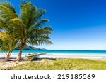 boat by palm tree on one of the ... | Shutterstock . vector #219185569