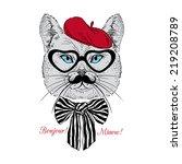 fashion portrait of cat in... | Shutterstock .eps vector #219208789