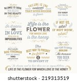 set of quotes typographical... | Shutterstock .eps vector #219313519