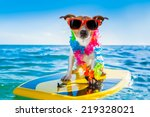 dog surfing on a surfboard... | Shutterstock . vector #219328021
