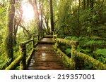 wooden walkway through in deep... | Shutterstock . vector #219357001