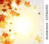 fall maple leaves on sunny... | Shutterstock .eps vector #219362401