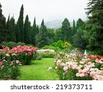 Stock photo rose garden 219373711