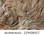 Pattern Of Tree Trunk.