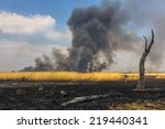 Wildfire In The Field With Dry...