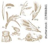 cereals set. hand drawn... | Shutterstock .eps vector #219886861