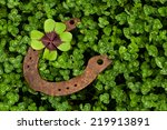 Stock photo horseshoe with four leaf clover in clover field 219913891