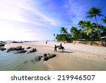 Horse On The Hua Hin Beach...