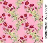 wild flowers seamless pattern... | Shutterstock .eps vector #220170949