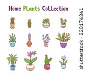 collection of 12 home plants | Shutterstock .eps vector #220176361