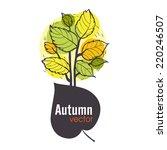 autumn tree background  eps 10... | Shutterstock .eps vector #220246507