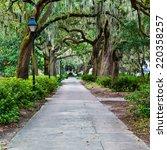 Forsyth Park In Savannah  Ga