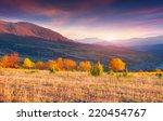colorful autumn landscape in... | Shutterstock . vector #220454767