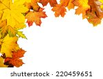 frame from vivid colorful... | Shutterstock . vector #220459651