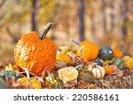 Display Of Different Pumpkins...