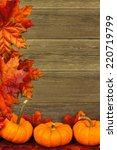 Vertical autumn leaves and pumpkin border against aged wood - stock photo