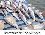 flies on drying fish | Shutterstock . vector #220737295