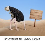 Scared Ostrich Burying Head In...