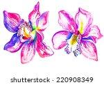 Orchids Watercolor Illustratio...