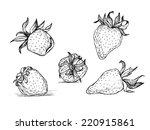 hand drawn vector illustration  ... | Shutterstock .eps vector #220915861