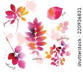 set of beautiful watercolor...   Shutterstock .eps vector #220936831