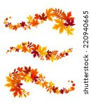 autumn colorful leaves. vector... | Shutterstock .eps vector #220940665