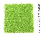 square of green grass field... | Shutterstock . vector #221198281