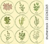 vector set of colored herbs.... | Shutterstock .eps vector #221262265
