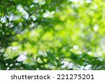 blur green leaves with bokeh ... | Shutterstock . vector #221275201