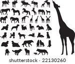 animals set vector | Shutterstock .eps vector #22130260