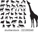 animals set vector   Shutterstock .eps vector #22130260