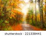 Bright Sun Rays On Autumn Alley