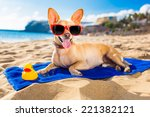 chihuahua dog at the ocean... | Shutterstock . vector #221382121