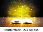 open book with golden glow... | Shutterstock . vector #221431555