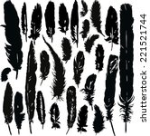 set of silhouettes by plumes ... | Shutterstock .eps vector #221521744