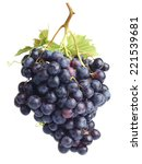 wine grape | Shutterstock . vector #221539681