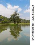 tree reflection | Shutterstock . vector #221583625