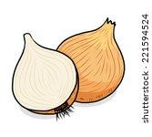onion   cartoon vector and...