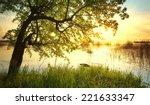 Tree Near Lake During Sunset....