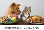 Stock photo dog and cat choosing meat versus veggies and fruits 221675707