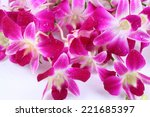 purple orchids on a white... | Shutterstock . vector #221685397